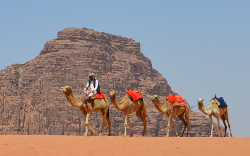 Wadi Rum Caravane